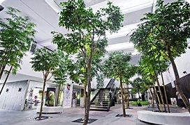 Interiér umělé rostliny