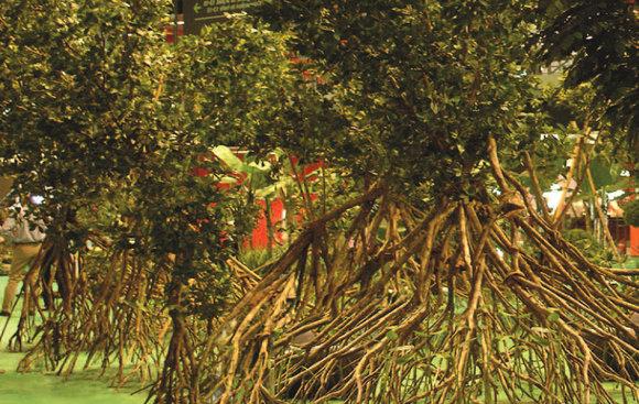 Umělé stromy kořeny